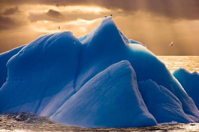 Blue Iceberg,  in the Scotia Sea in Antarctica